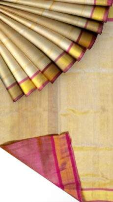 Off white Tissue Silk Saree with golden border-yespoho