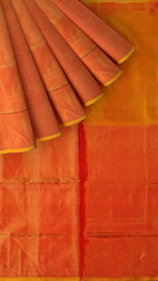 Mustard Uppada Tissue Silk Saree With Orangish Golden Border-yespoho