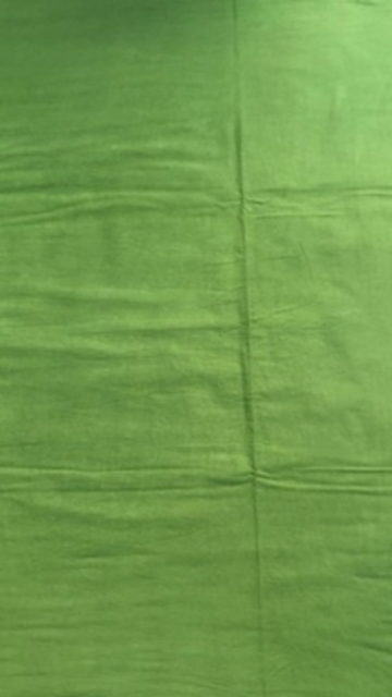 Shop Pista Green Hand Block Print Saree Online