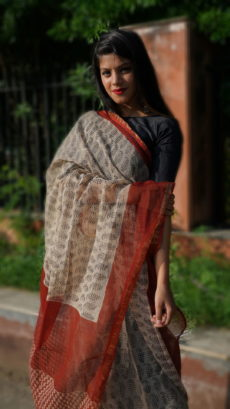 Light Brown And Red Small Butta Printed kota Cotton saree-yespoho