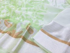 Light  Green  Hand Woven Kora Organza Saree-yespoho